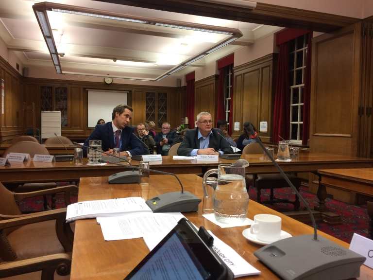 Council Scrutiny Committee